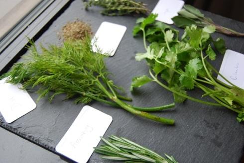 herbs0